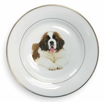 St Bernard Dog Gold Rim Plate in Gift Box Christmas Present, AD-SBE5PL