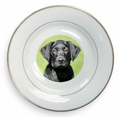 AD-L59PL Chocolate Labrador Dog Love Gold Rim Plate in Gift Box Christmas Prese