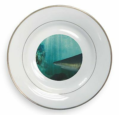 Shark Photo Gold Rim Plate in Gift Box Christmas Present, AF-SHA1PL