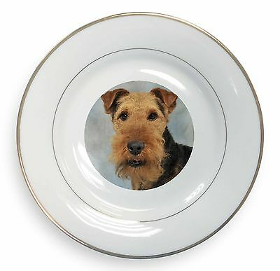 Welsh Terrier Dog Gold Rim Plate in Gift Box Christmas Present, AD-WT1PL