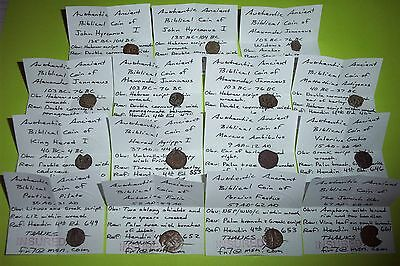 Collection of BIBLICAL COINS certified HEROD, WIDOWS MITE, PONTIUS PILATE bible