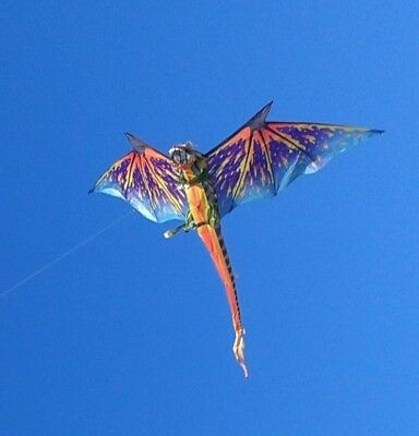 Large WindNSun 3-D Dragon Kite - 193cm Wingspan - Rainbow Dragon