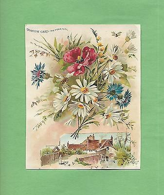Lovely WILD FLOWERS Gorgeous WOOLSON SPICE CO. LION COFFEE Victorian Trade Card
