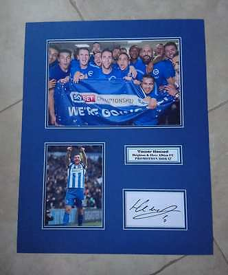 Tomer Hemed - Brighton & Hove Albion Fc - Huge Signed Photo Montage