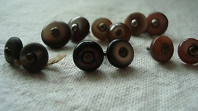 12 Vintage Mother of Pearl  Boot Button - Suit Teddy Eyes / Doll Shoes