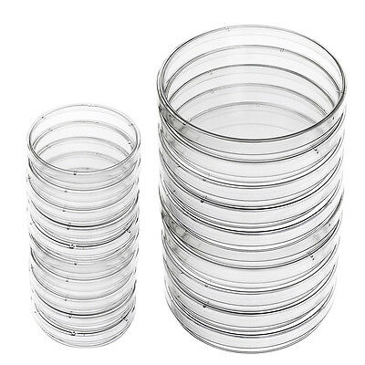 20 Pieces 100 mm 60 mm Plastic Petri Dish Sterile Dishes with Lid