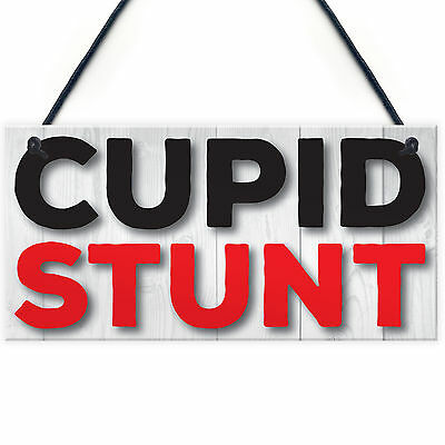 Cupid Stunt Funny Man Cave Home Bar Shed Pub Hanging Plaque Friendship Gift Sign