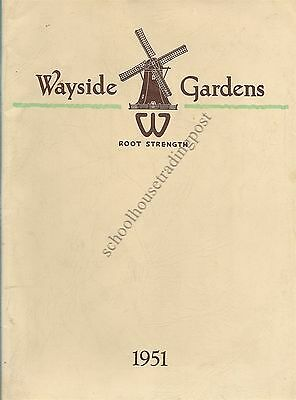 Wayside Gardens Mentor Ohio 1951 Large Illustrated Catalog With Prices