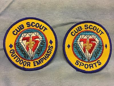 Boy Scouts-   Assorted Cub Scout patches lot