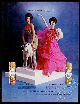 1961 Borzoi Russian Wolfhound & toy poodle photo Helene Curtis hairspray ad