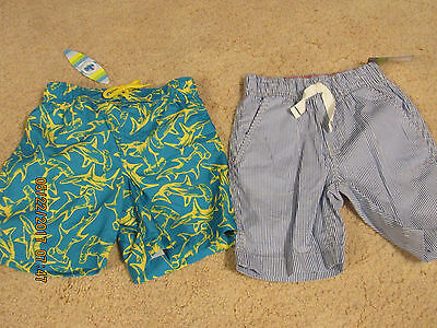 2 Toddler Boys Shorts Swim and Striped 4 4T