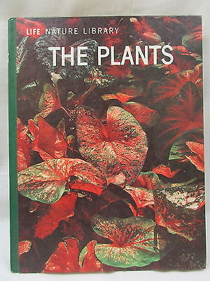 Life Nature Library: The Plants By Frits W Went Hardcover