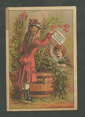 1880's Advertising Trade Card Dunbar Shoes at Robert Cherry's Germantown P.A.