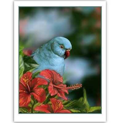 © ART - Indian Ringneck Wildlife Blue Bird Parrot Original nature print by Di