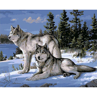 Paint By Number Kit On Canvas Snowland Wolf Animal DIY Painting PZ7055