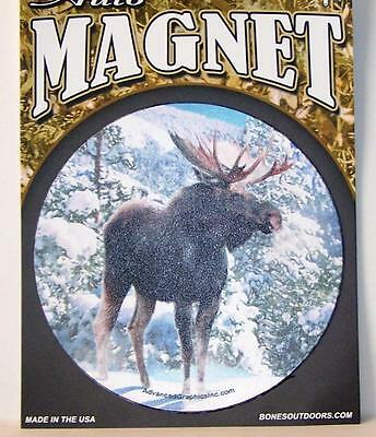 "Majestic Moose 5.5"" Round Car Fridge Plastic Magnet Gift USA"