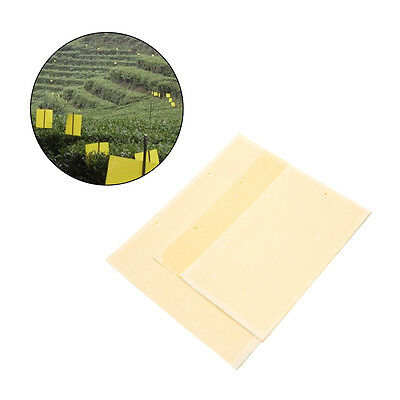 25cm INSECT GLUE/STICKY TRAPS Pad Yellow PVC Pest Control Fruitfly Aphids Wasps