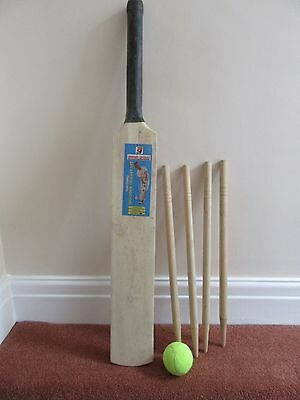 BOYS GIRLS CRICKET SET Games BATS BALL STUMP  SIZE 4 CHILDRENS