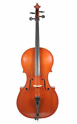 English cello, mid 20th century, approx. 1940/1950         (old, antique