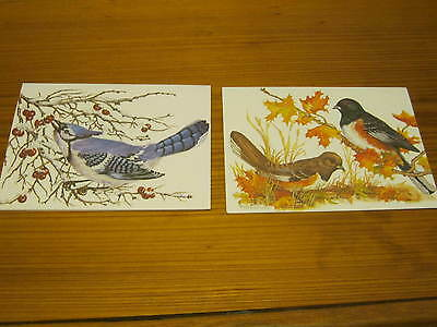 Vintage Two Artistic Blank Note Cards ~ Birds ~by John Cornacchio ~ Estate Find