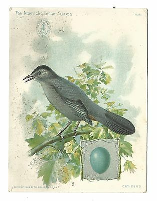 1899 Trade Card Singer Sewing Machine Co Oil Cat Bird American Singer Series 11