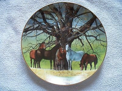 Meeting Place Donald W. Patterson Horse Collector Plate
