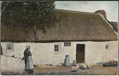 Lady at thatched Clogheen Post Office at Cork, Ireland, on 1905 colour postcard