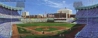 """""""Yankee Stadium Panorama"""" Limited Edition Andy Jurinko Lithograph Framed/Matted"""