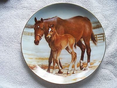 """Safe And Sound Fred Stone  9 1/4""""  Collector Horse Plate"""