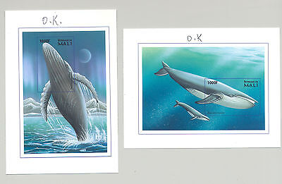 Mali #900-901 Whales 2v S/S Imperf Chromalin Proofs