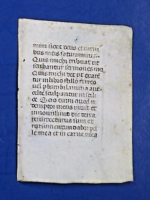 Plain Mini Medieval Manuscript Leaf,Book of Hours,Latin,Vellum,c.1460