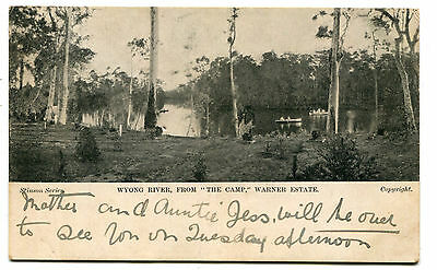 Wyong River from the Camp Warner Estate c.1907