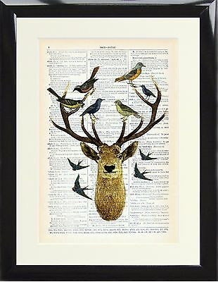 Dictionary Art Print Stag Deer Antlers with Birds Picture Vintage Quirky Framed