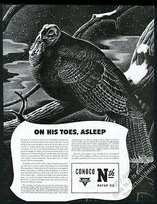 1941 wild turkey asleep on snowy branch art Conoco Motor Oil vintage print ad