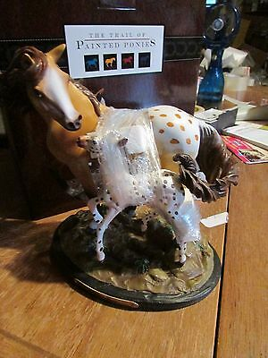 Trail of Painted Ponies Tribute to Appaloosa Horse A STAR IS BORN Mare&Foal NIB