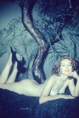 Vintage 40s-60s Nude 35mm Slide / Negative- Curley Hair- Beauty under Tree- Butt