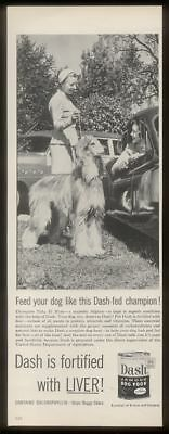 1954 champion Afghan Hound photo Dash dog food print ad