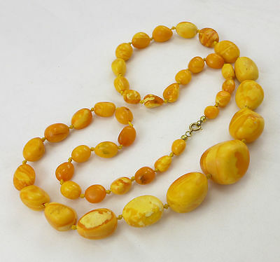 43,8 Gramm natural Baltic Butterscotch Amber Bernstein Kette Necklace antik