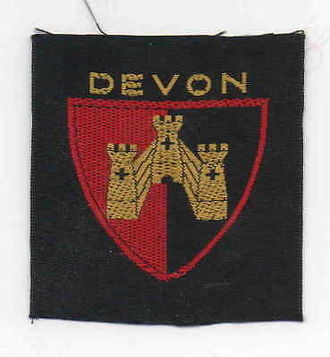 UK Scout old wide ribbon Devon County badge