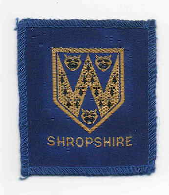 UK Scout old large bound Shropshire County badge
