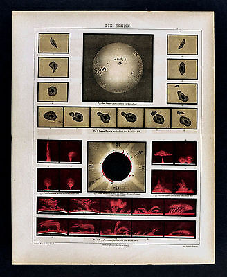 1875 Meyer Print - Sun Map - Total Eclipe of 1860 - Solar Flares & Sun Spots