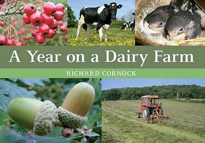 A Year on a Dairy Farm - Paperback NEW Richard Cornock 2015-08-15