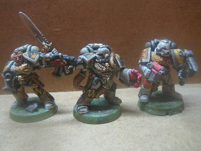 Warhammer 40k ++ 3 Space Wolves ++