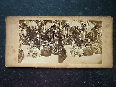 Stereoview Nice Early Image Of Victorian Ladies & Gent In Botanical Conservatory