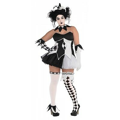 Harlequin Costume Adult Plus Size Jester Halloween Fancy Dress