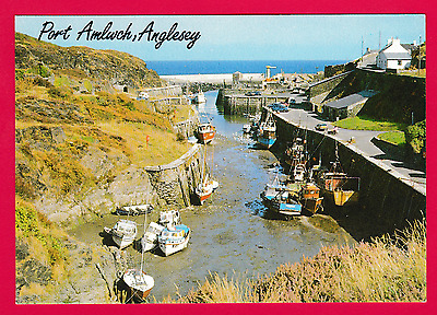 Unposted card. Amlwch Port, Anglesey
