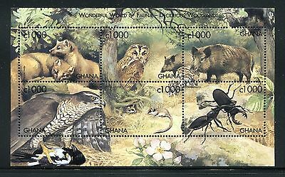 Ghana, MNH, Insects  Beetles Wild Animals Bird. x26121