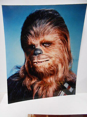 Star Wars Chewbacca (Peter Mayhew) signed 8x10 photo w/ COA