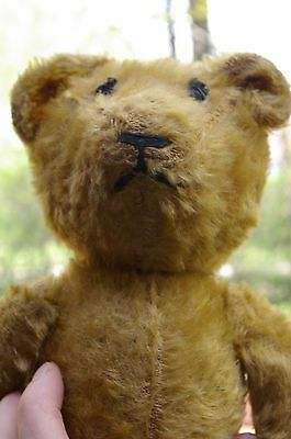Original Antique Vintage 1930's Jointed Steiff Mohair Teddy Bear well loved nice