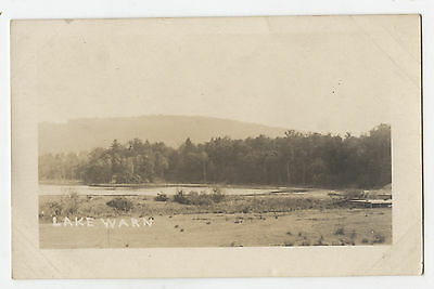 RPPC Chenango County, N.Y. LAKE WARN Photo Postcard
